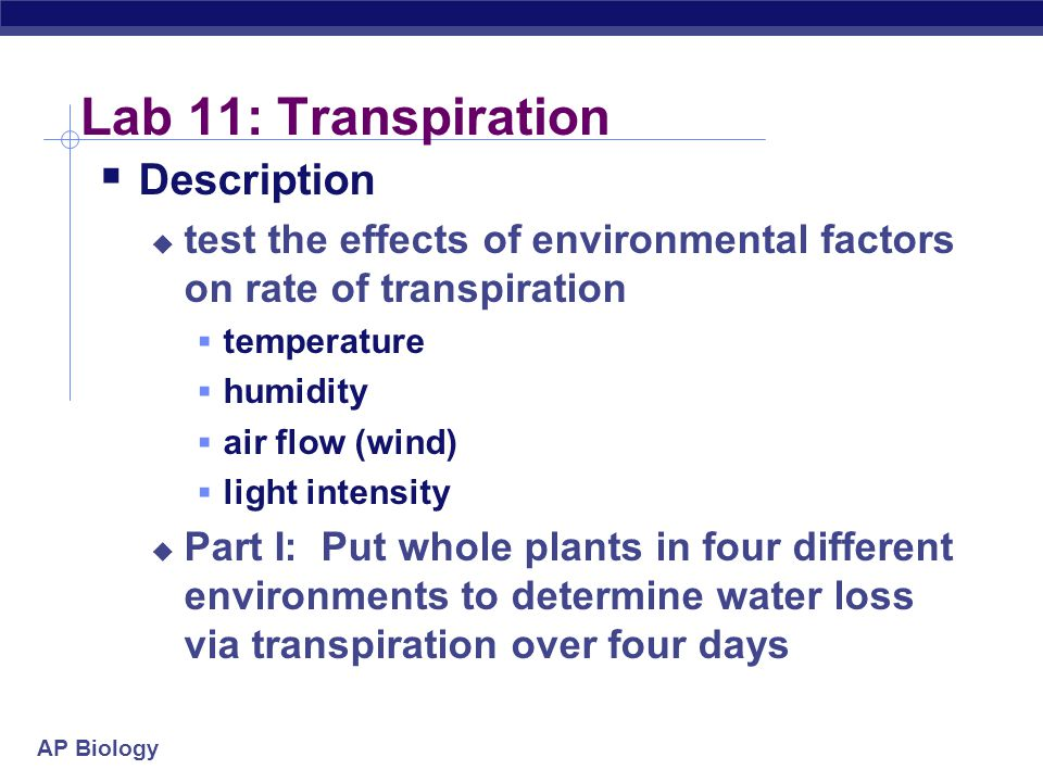 AP Biology Lab 11: Transpiration  Description  test the effects of environmental factors on rate of transpiration  temperature  humidity  air flow (wind)  light intensity  Part I: Put whole plants in four different environments to determine water loss via transpiration over four days