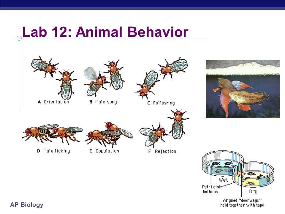 AP Biology Lab 12: Animal Behavior  Experimental design