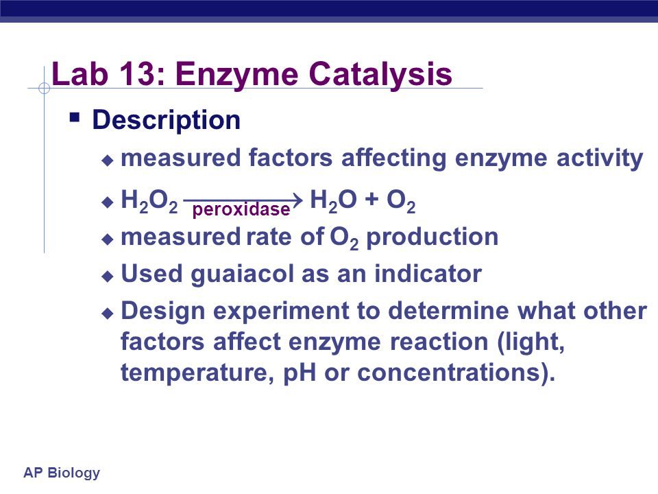 AP Biology Lab 13: Enzyme Catalysis  Description  measured factors affecting enzyme activity  H 2 O 2  H 2 O + O 2  measured rate of O 2 production  Used guaiacol as an indicator  Design experiment to determine what other factors affect enzyme reaction (light, temperature, pH or concentrations).