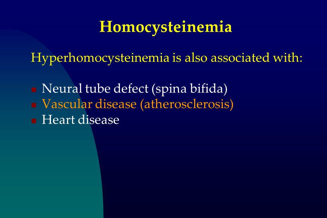 Homocysteinemia Hyperhomocysteinemia is also associated with: Neural tube defect (spina bifida) Vascular disease (atherosclerosis) Heart disease