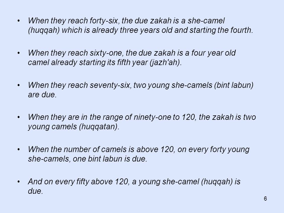 6 When they reach forty-six, the due zakah is a she-camel (huqqah) which is already three years old and starting the fourth. When they reach sixty-one