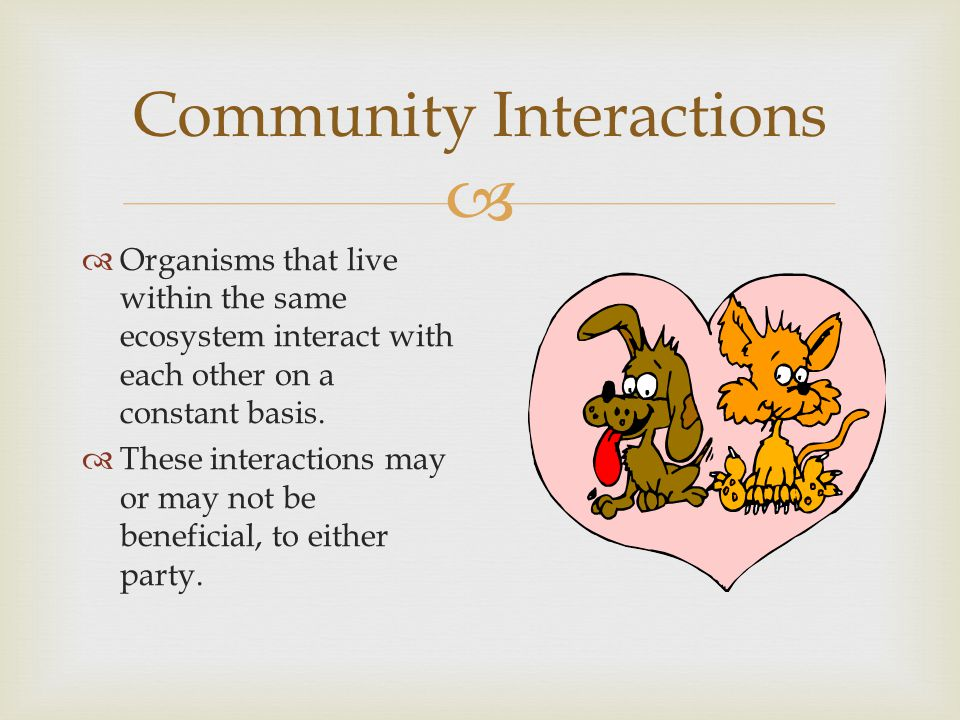  Community Interactions  Competition : This interaction occurs when two organisms fight over the use of one resource at the same time.