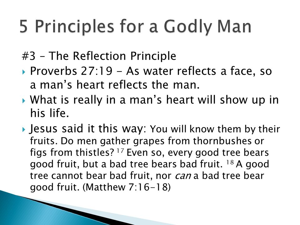 #3 – The Reflection Principle  Proverbs 27:19 - As water reflects a face, so a man's heart reflects the man.