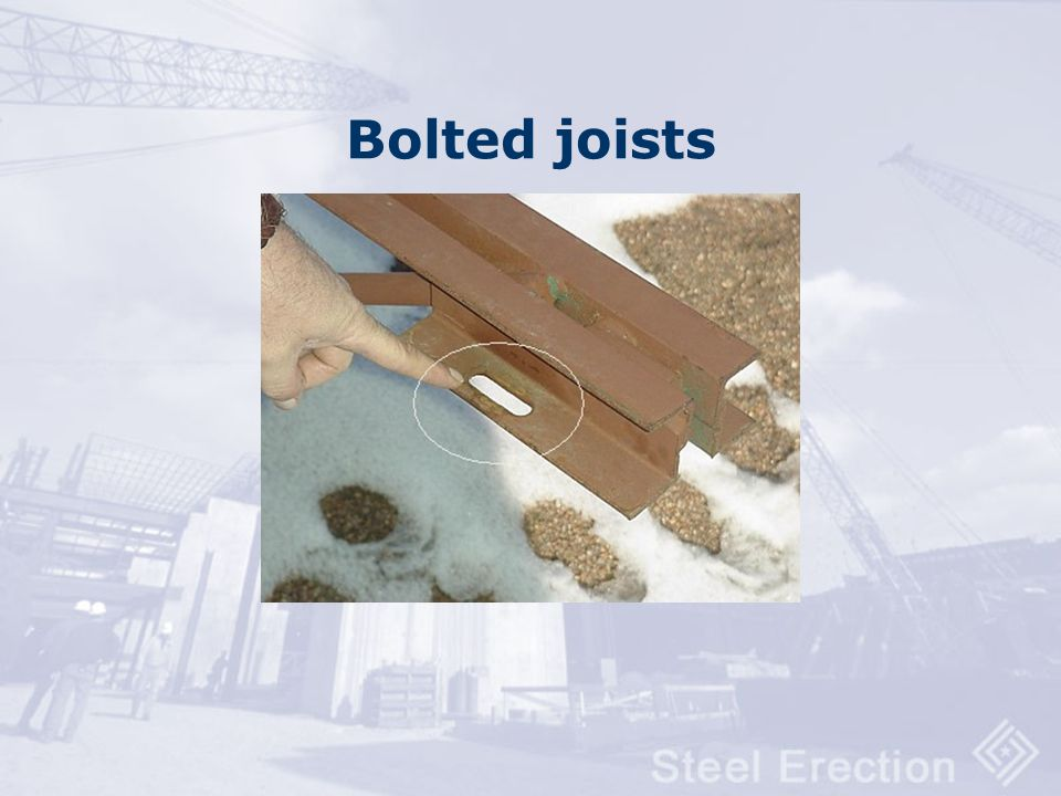 Vertical stabilizer plate