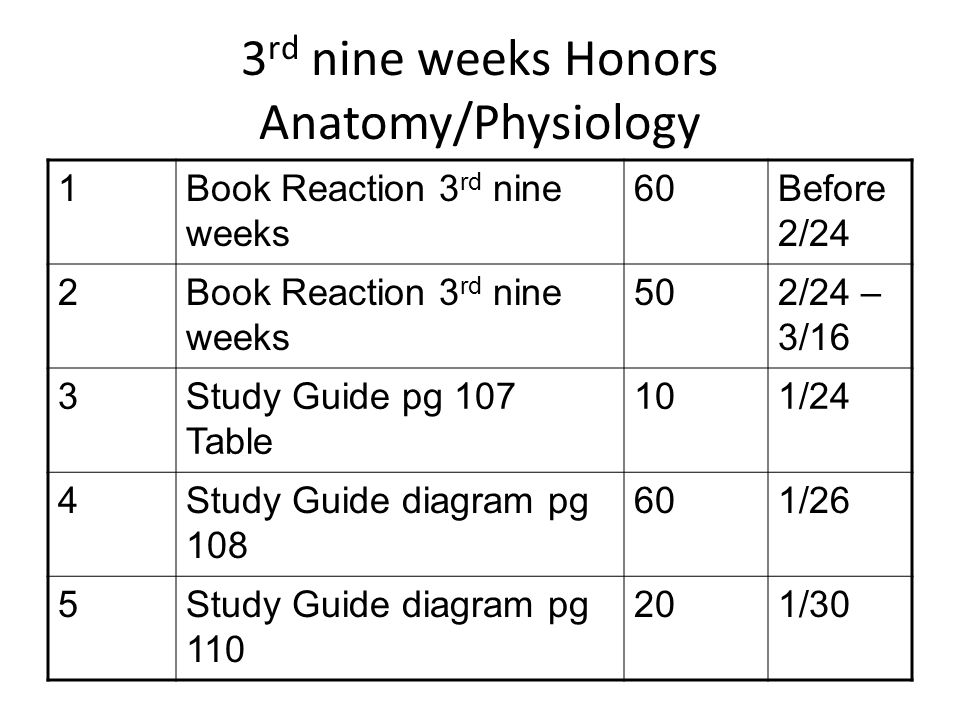 3 rd nine weeks Honors Anatomy/Physiology 1Book Reaction 3 rd nine weeks 60Before 2/24 2Book Reaction 3 rd nine weeks 502/24 – 3/16 3Study Guide pg 107 Table 101/24 4Study Guide diagram pg 108 601/26 5Study Guide diagram pg 110 201/30