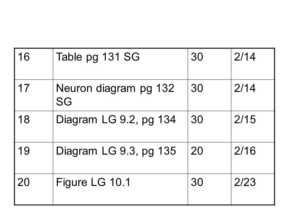 16Table pg 131 SG302/14 17Neuron diagram pg 132 SG 302/14 18Diagram LG 9.2, pg 134302/15 19Diagram LG 9.3, pg 135202/16 20Figure LG 10.1302/23