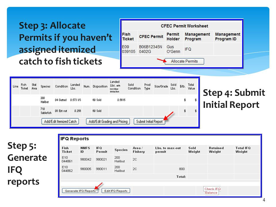 4 Step 4: Submit Initial Report Step 3: Allocate Permits if you haven't assigned itemized catch to fish tickets Step 5: Generate IFQ reports