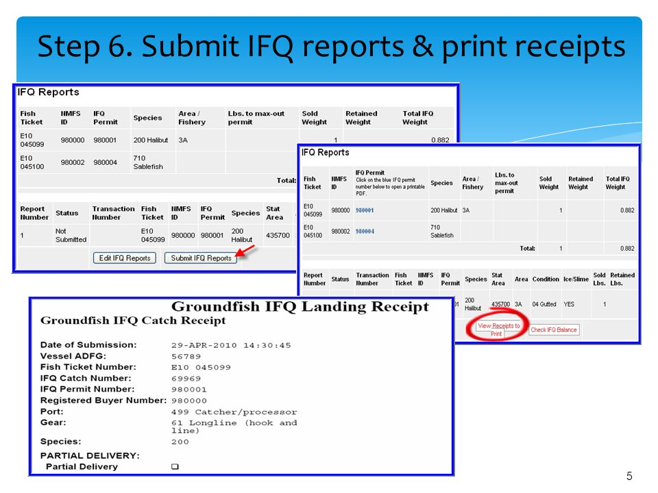 5 Step 6. Submit IFQ reports & print receipts