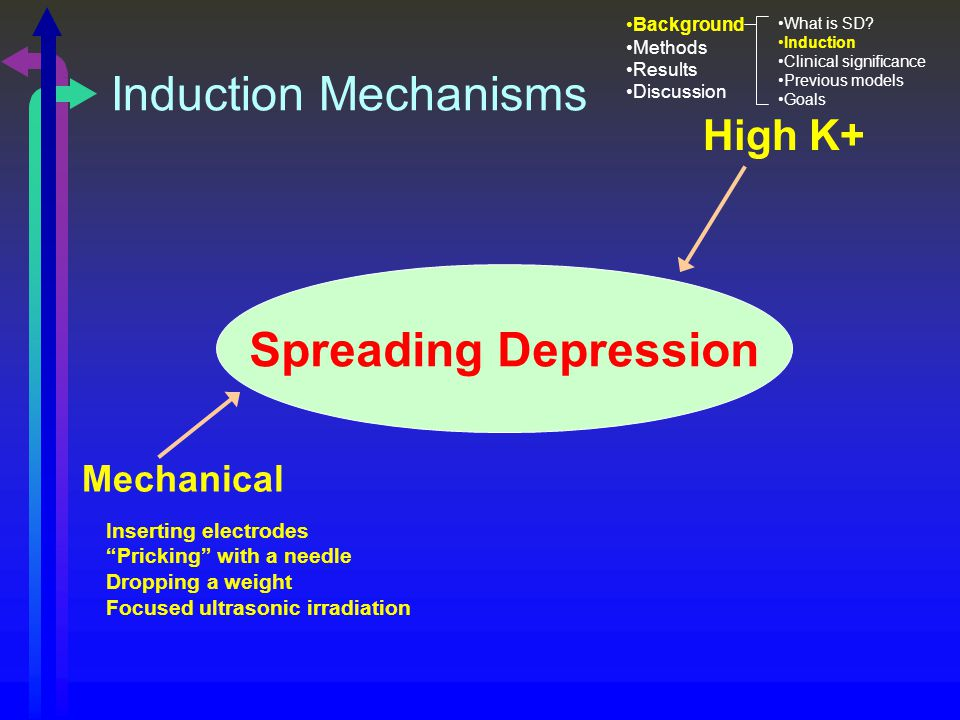 High K+ Mechanical Spreading Depression Inserting electrodes Pricking with a needle Dropping a weight Focused ultrasonic irradiation Induction Mechanisms Background Methods Results Discussion What is SD.