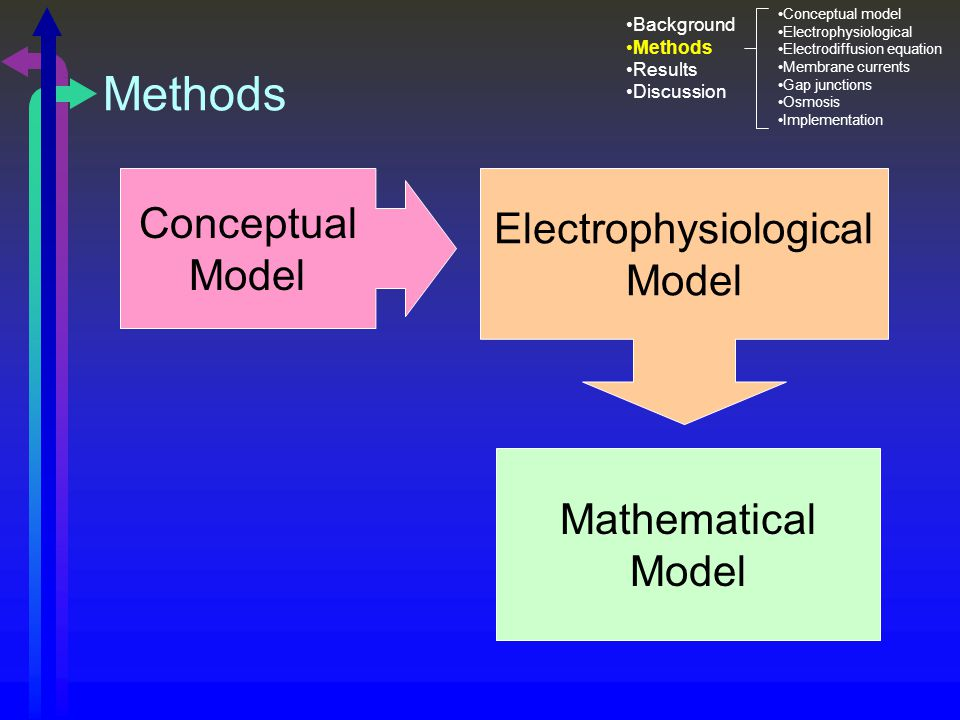 Methods Conceptual Model Electrophysiological Model Mathematical Model Background Methods Results Discussion Conceptual model Electrophysiological Electrodiffusion equation Membrane currents Gap junctions Osmosis Implementation
