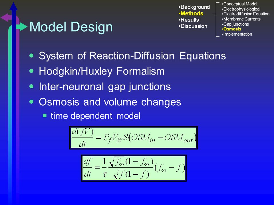 Model Design System of Reaction-Diffusion Equations Hodgkin/Huxley Formalism Inter-neuronal gap junctions Osmosis and volume changes  time dependent model Background Methods Results Discussion Conceptual Model Electrophysiological Electrodiffusion Equation Membrane Currents Gap junctions Osmosis Implementation