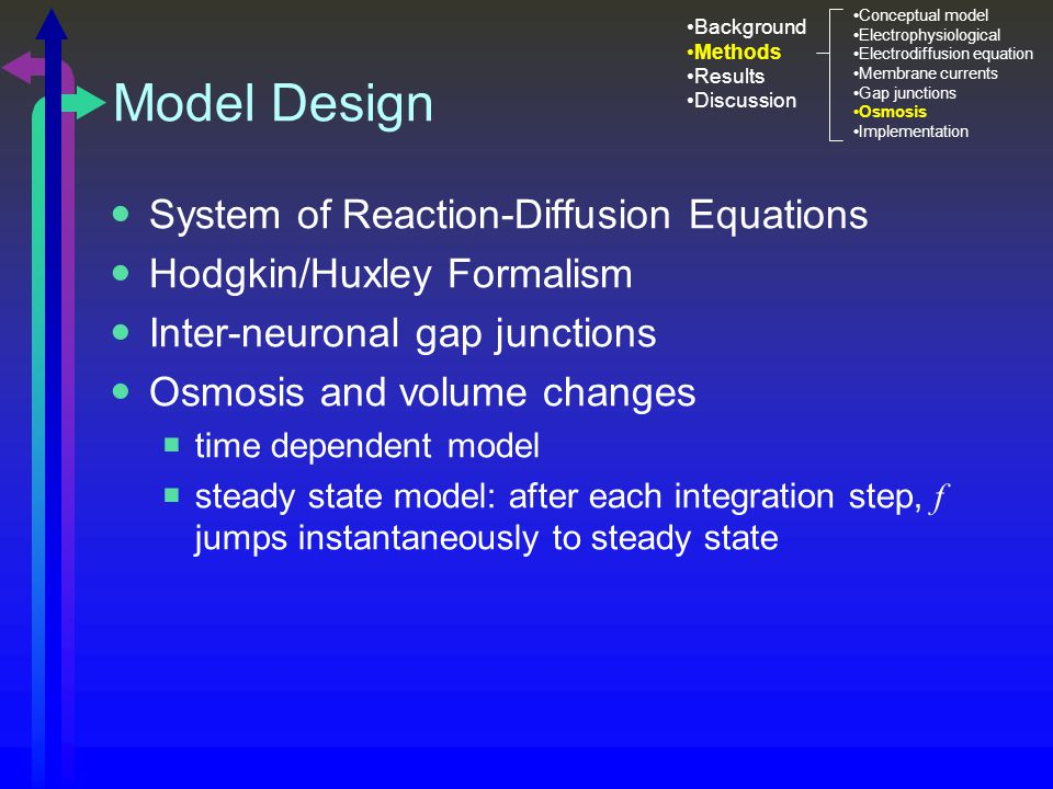 Model Design System of Reaction-Diffusion Equations Hodgkin/Huxley Formalism Inter-neuronal gap junctions Osmosis and volume changes  time dependent model  steady state model: after each integration step, f jumps instantaneously to steady state Background Methods Results Discussion Conceptual model Electrophysiological Electrodiffusion equation Membrane currents Gap junctions Osmosis Implementation
