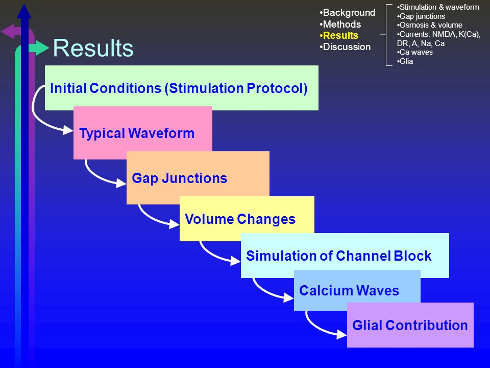 Results Initial Conditions (Stimulation Protocol) Typical Waveform Gap Junctions Volume Changes Simulation of Channel Block Calcium Waves Glial Contribution Background Methods Results Discussion Stimulation & waveform Gap junctions Osmosis & volume Currents: NMDA, K(Ca), DR, A, Na, Ca Ca waves Glia