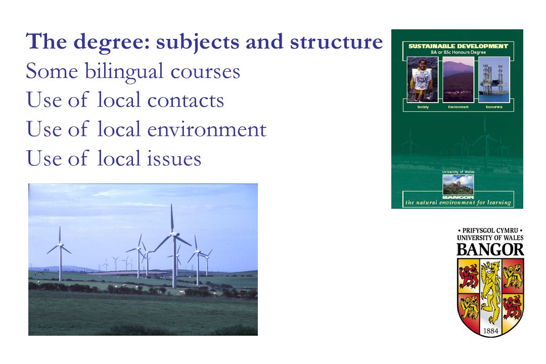 The degree: subjects and structure Some bilingual courses Use of local contacts Use of local environment Use of local issues