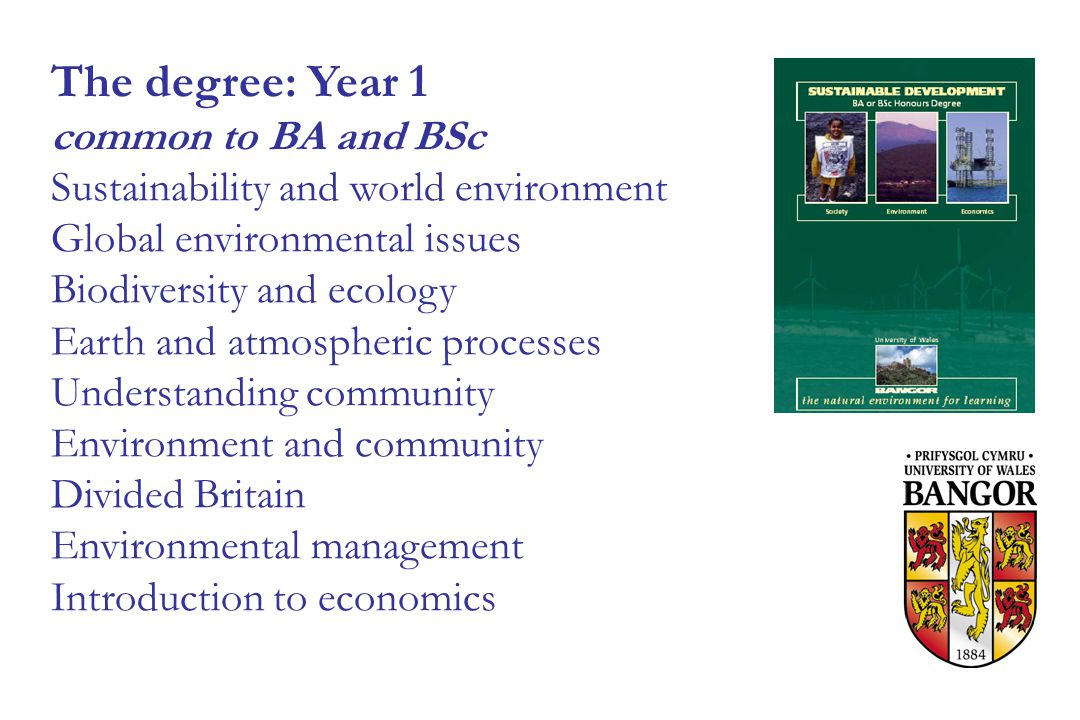 The degree: Year 1 common to BA and BSc Sustainability and world environment Global environmental issues Biodiversity and ecology Earth and atmospheric processes Understanding community Environment and community Divided Britain Environmental management Introduction to economics