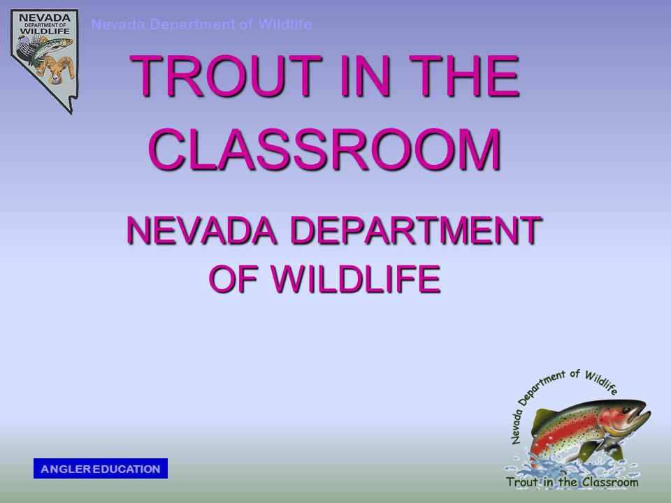 TROUT IN THE CLASSROOM NEVADA DEPARTMENT OF WILDLIFE Nevada Department of Wildlife ANGLER EDUCATION