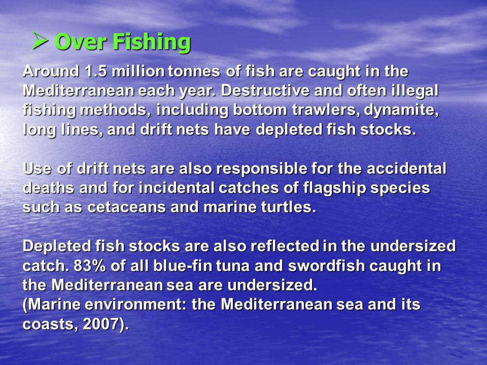  O O O Over Fishing Around 1.5 million tonnes of fish are caught in the Mediterranean each year.