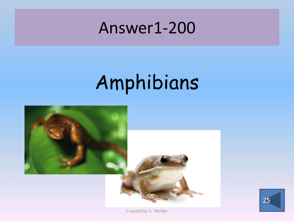 Answer Amphibians Created by S. Weider