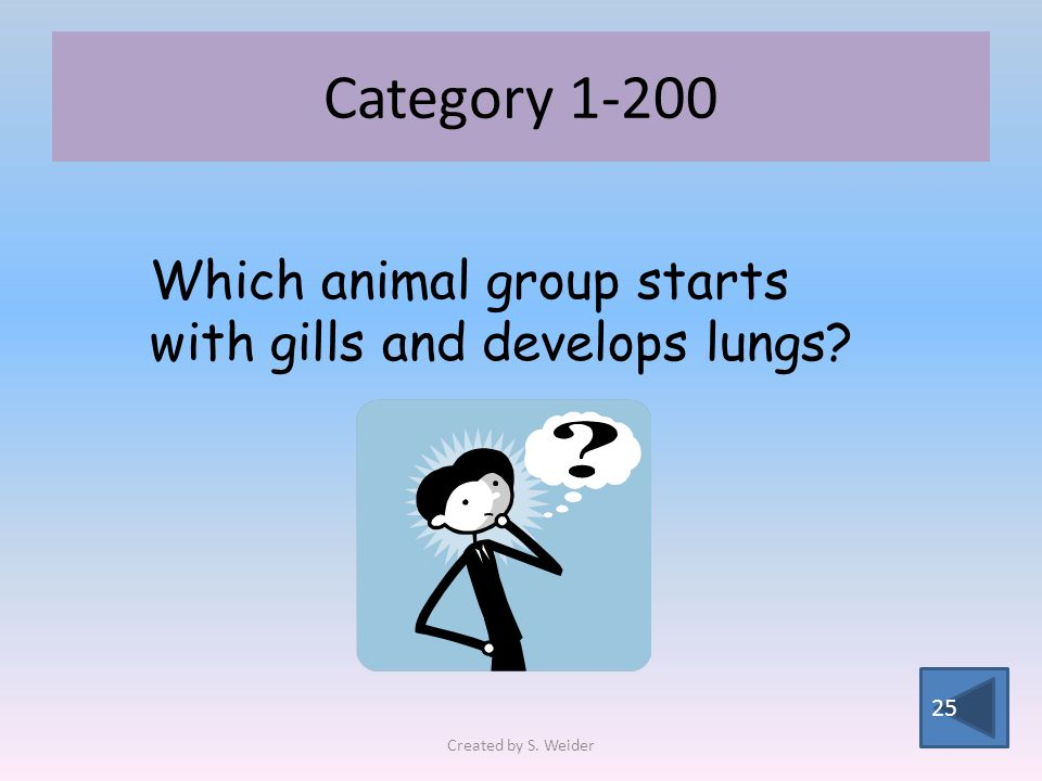 Category Which animal group starts with gills and develops lungs Created by S. Weider