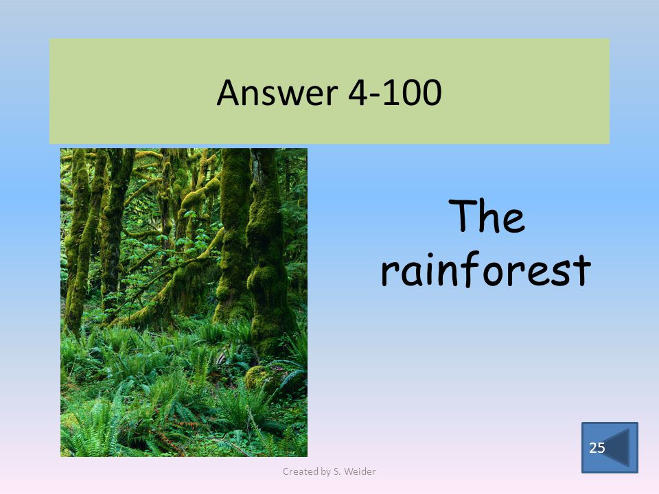 Answer The rainforest Created by S. Weider