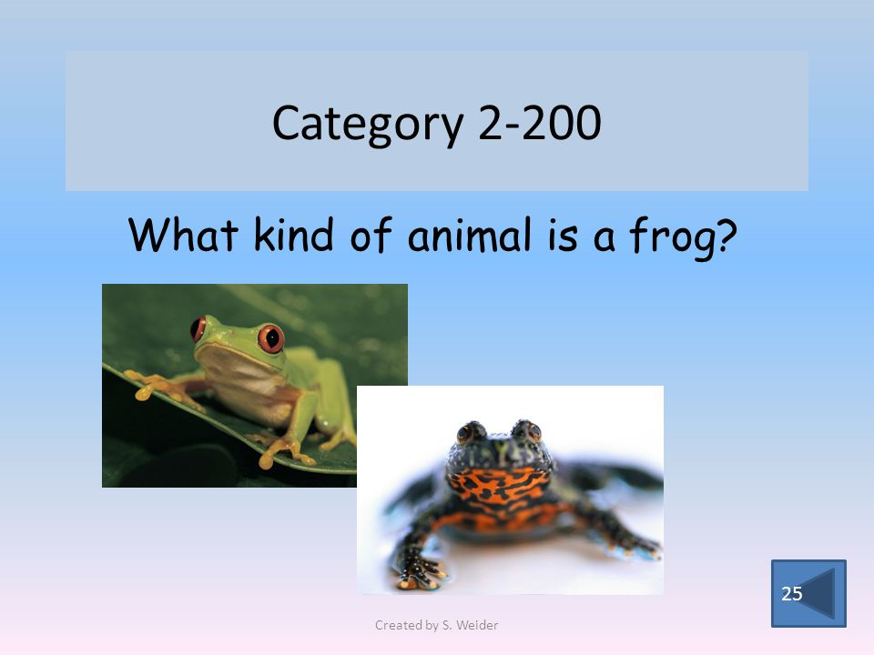 Category 2-200 25 What kind of animal is a frog Created by S. Weider