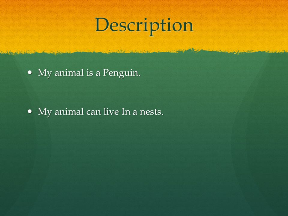 Penguin By Alyssa