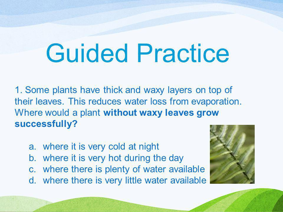 1. Some plants have thick and waxy layers on top of their leaves. This reduces water loss from evaporation. Where would a plant without waxy leaves gr