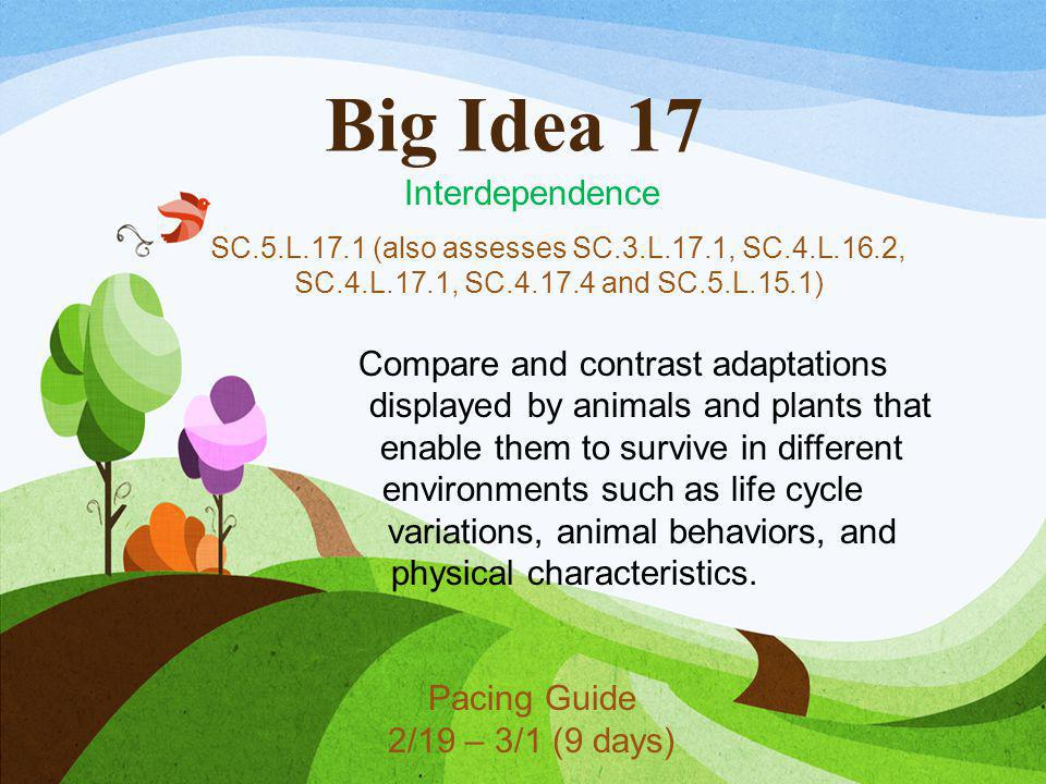 Big Idea 17 Interdependence SC.5.L.17.1 (also assesses SC.3.L.17.1, SC.4.L.16.2, SC.4.L.17.1, SC.4.17.4 and SC.5.L.15.1) Compare and contrast adaptati