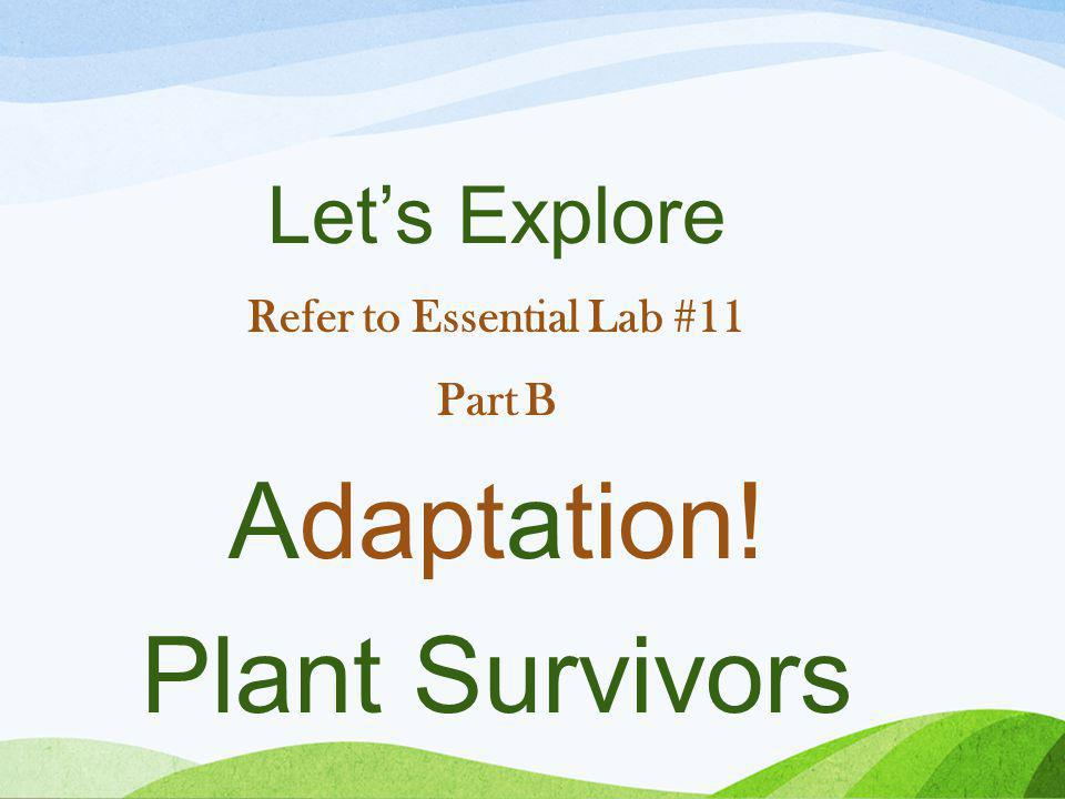Let's Explore Refer to Essential Lab #11 Part B Adaptation! Plant Survivors