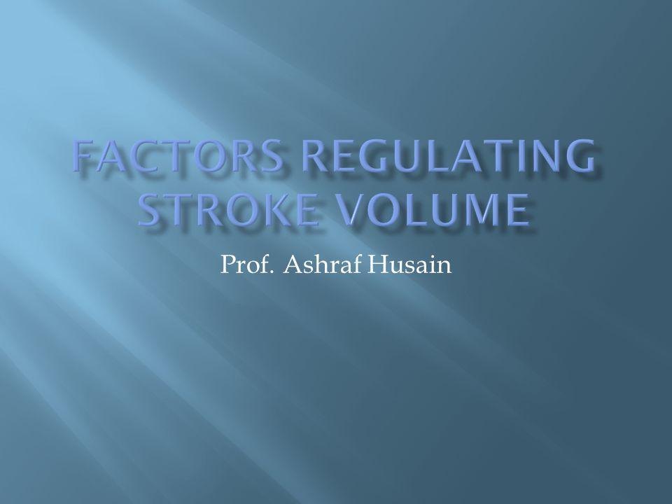 Prof. Ashraf Husain