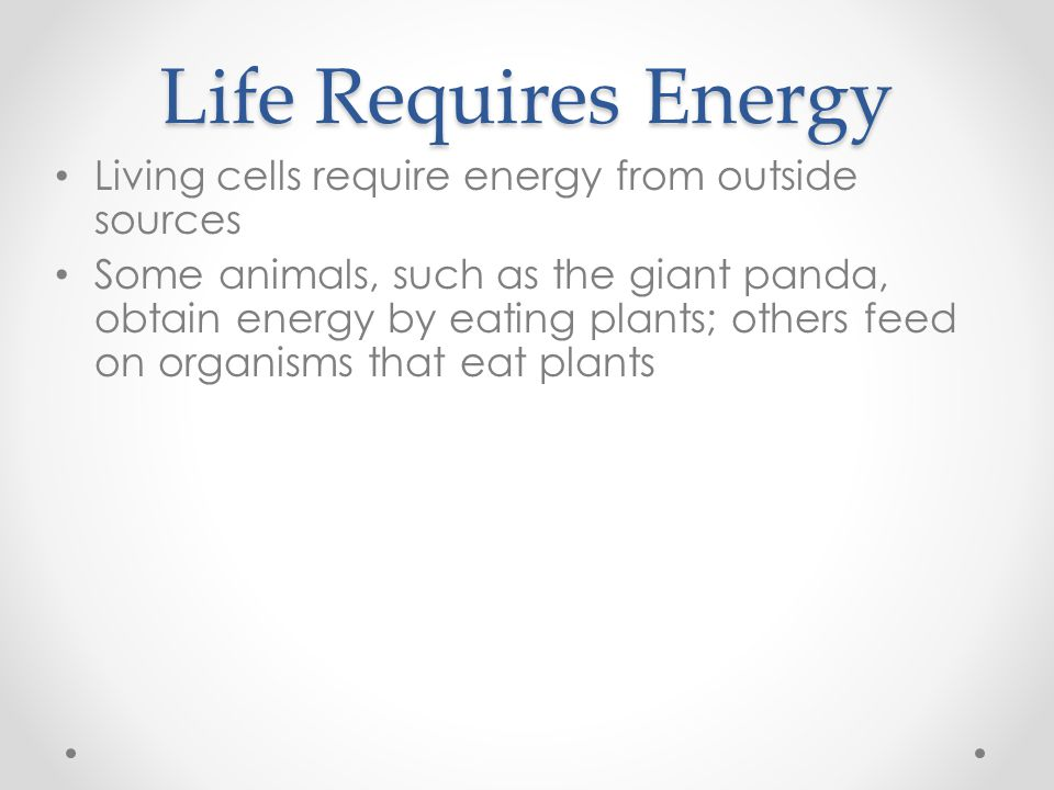 Life Requires Energy Living cells require energy from outside sources Some animals, such as the giant panda, obtain energy by eating plants; others fe
