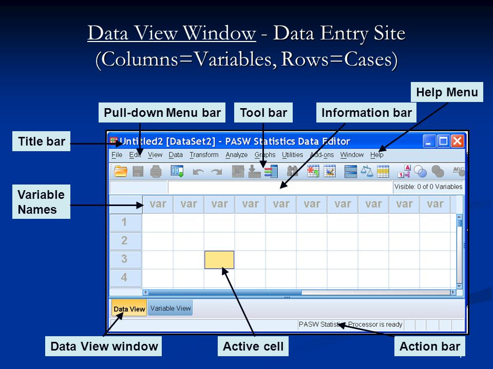 7 - Data Entry Site (Columns=Variables, Rows=Cases) Data View Window - Data Entry Site (Columns=Variables, Rows=Cases) Title bar Tool bar Data View wi