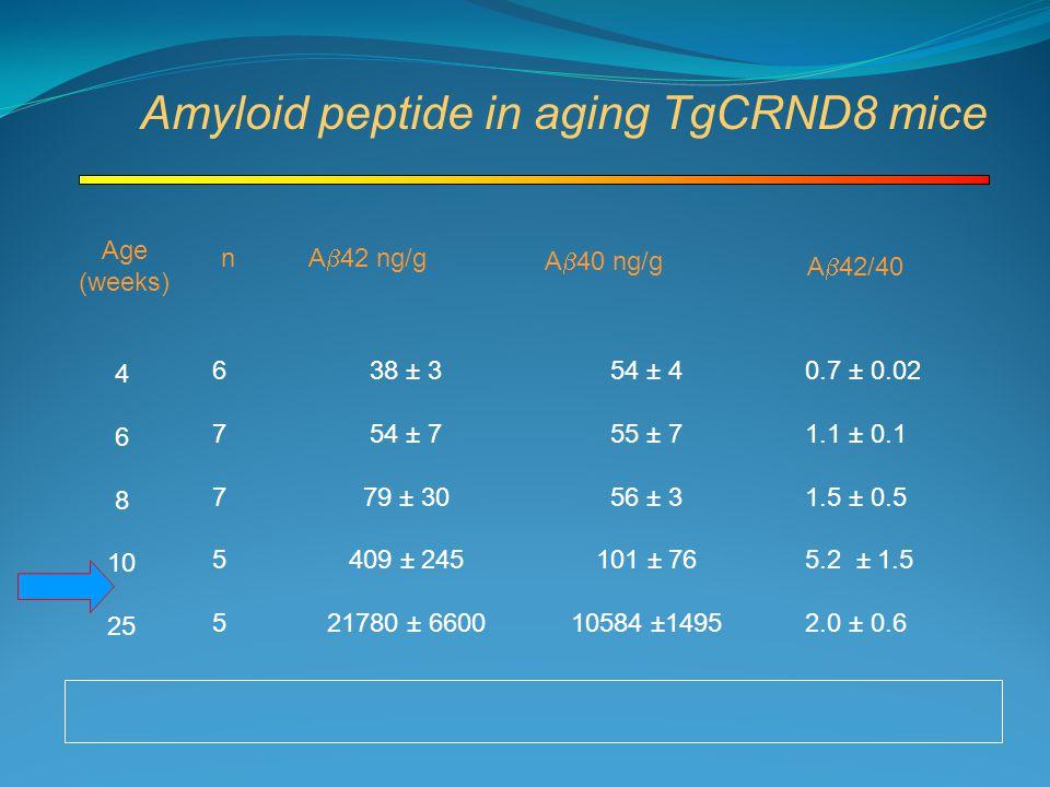 Age (weeks) n A  40 ng/g A  42 ng/g 4 6 8 10 25 6775567755 38 ± 3 54 ± 7 79 ± 30 409 ± 245 21780 ± 6600 54 ± 4 55 ± 7 56 ± 3 101 ± 76 10584 ±1495 0.7 ± 0.02 1.1 ± 0.1 1.5 ± 0.5 5.2 ± 1.5 2.0 ± 0.6 A  42/40 Amyloid peptide in aging TgCRND8 mice
