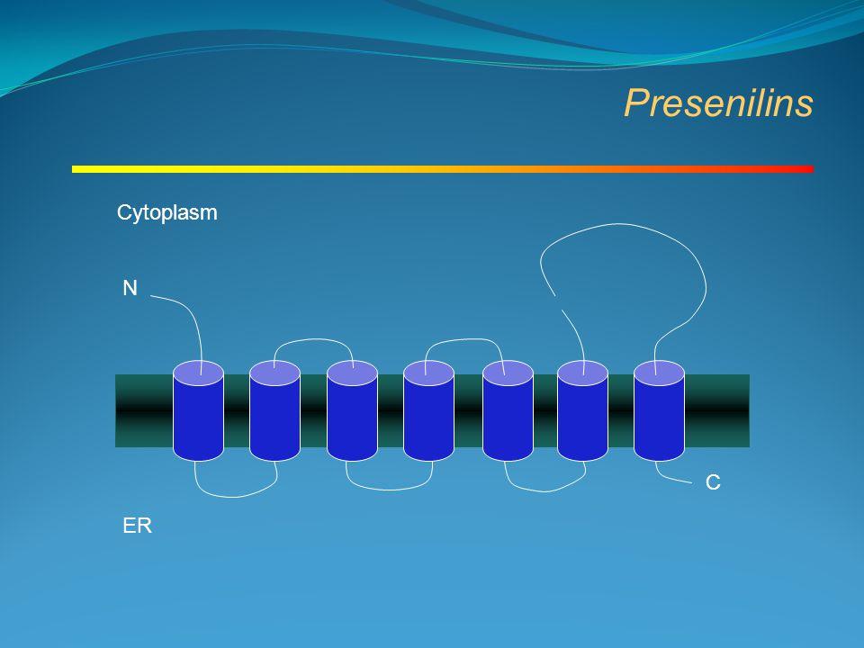 Presenilins N C ER Cytoplasm