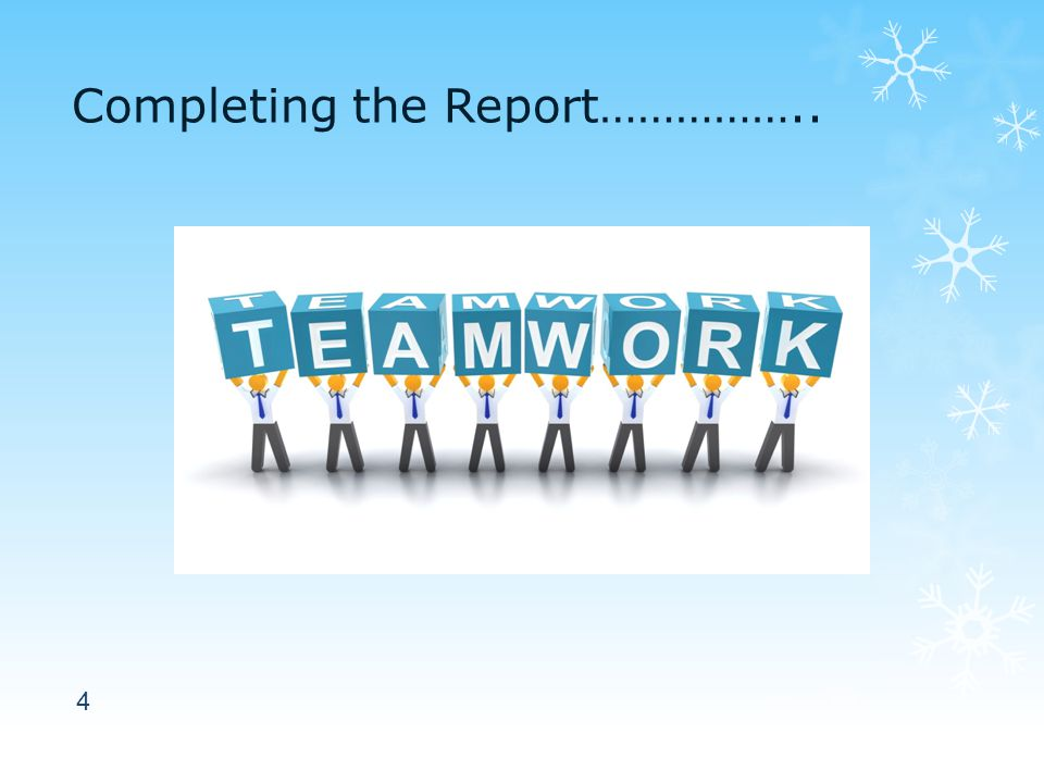 Completing the Report…………….. 4