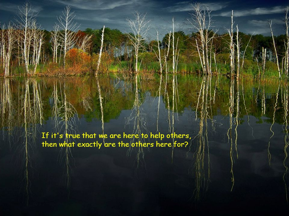 If it s true that we are here to help others, then what exactly are the others here for?