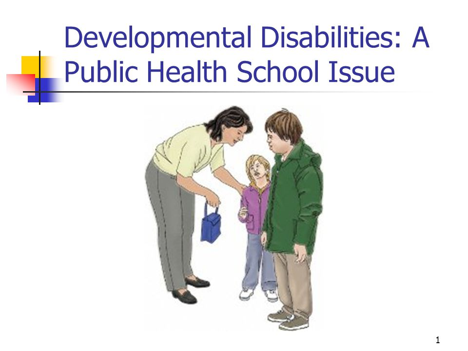2 What are Developmental Disabilities (DD).