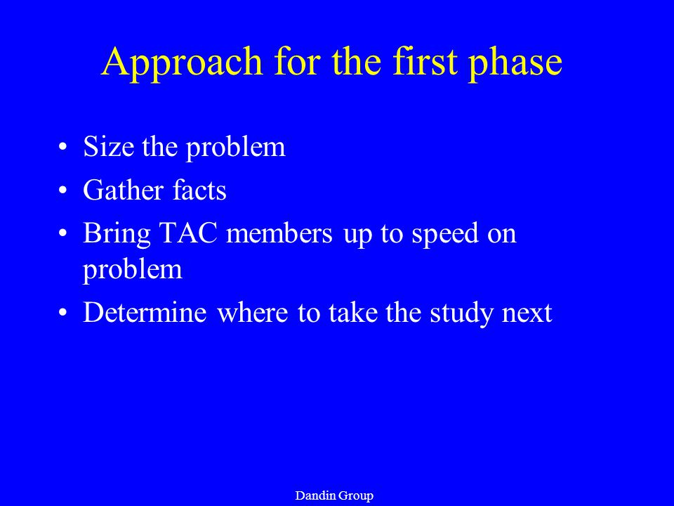 Dandin Group Approach for the first phase Size the problem Gather facts Bring TAC members up to speed on problem Determine where to take the study next