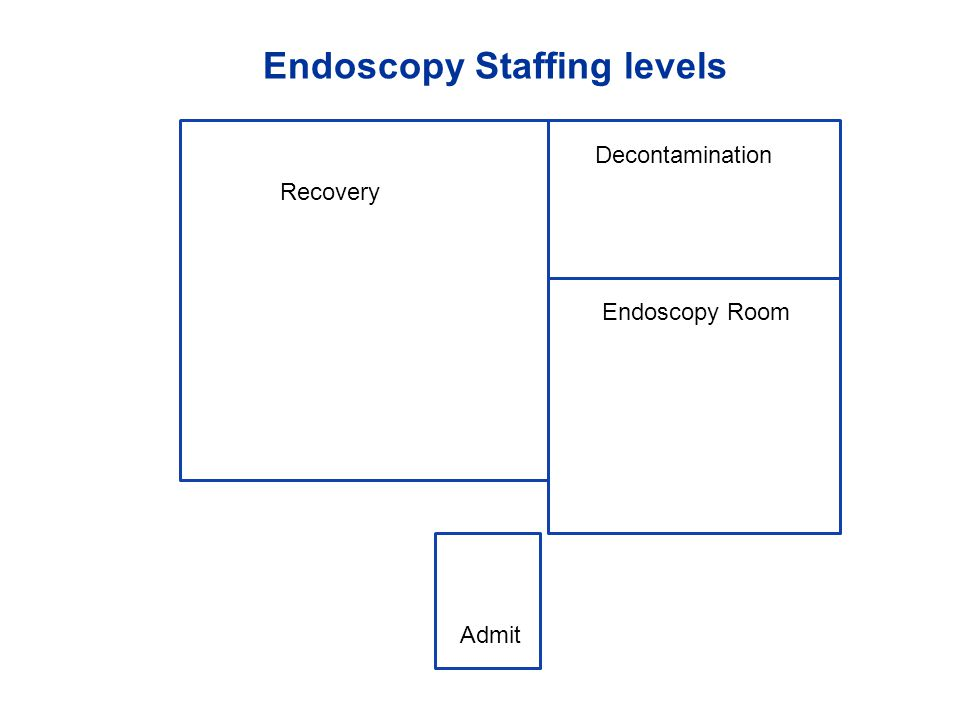 Endoscopy Staffing levels Endoscopy Room Admit Decontamination Recovery
