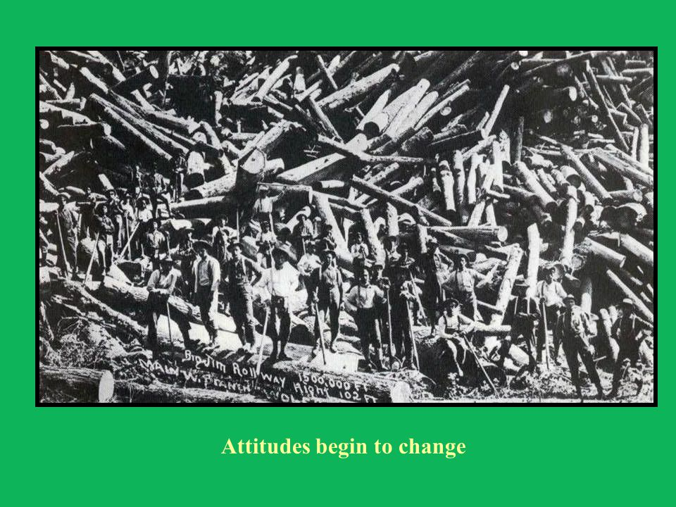 Attitudes begin to change