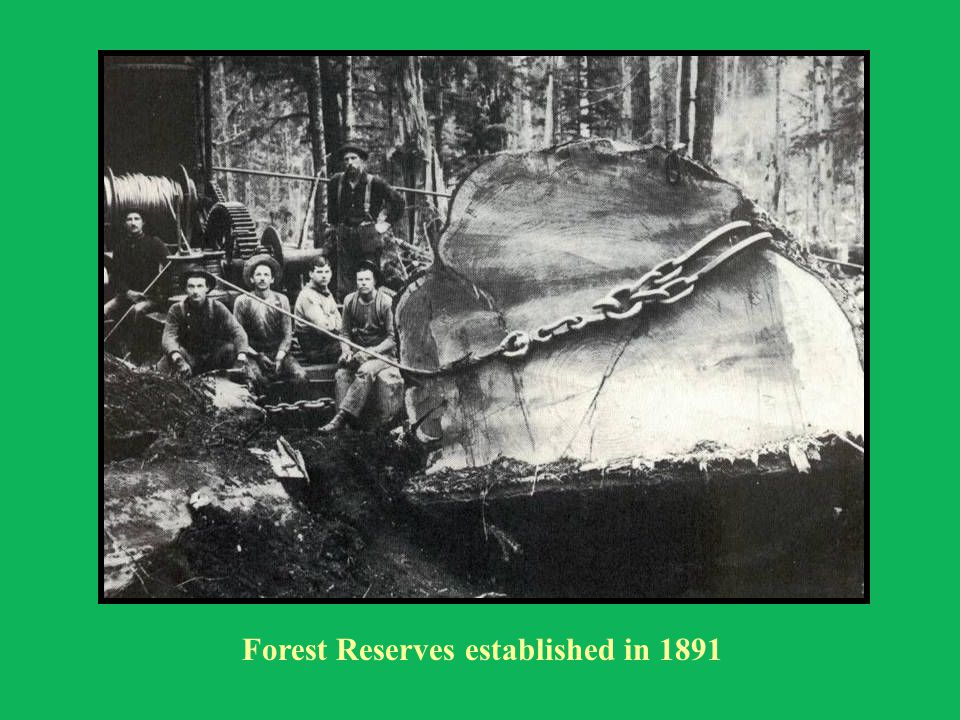 Forest Reserves established in 1891