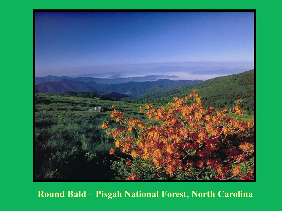 Round Bald – Pisgah National Forest, North Carolina