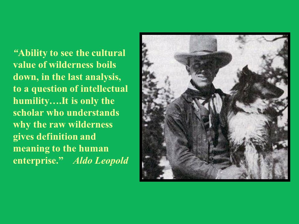Ability to see the cultural value of wilderness boils down, in the last analysis, to a question of intellectual humility….It is only the scholar who understands why the raw wilderness gives definition and meaning to the human enterprise. Aldo Leopold