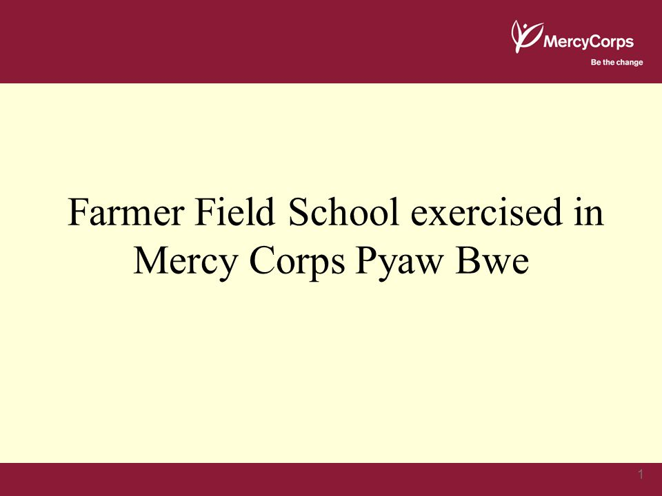 1 Farmer Field School exercised in Mercy Corps Pyaw Bwe