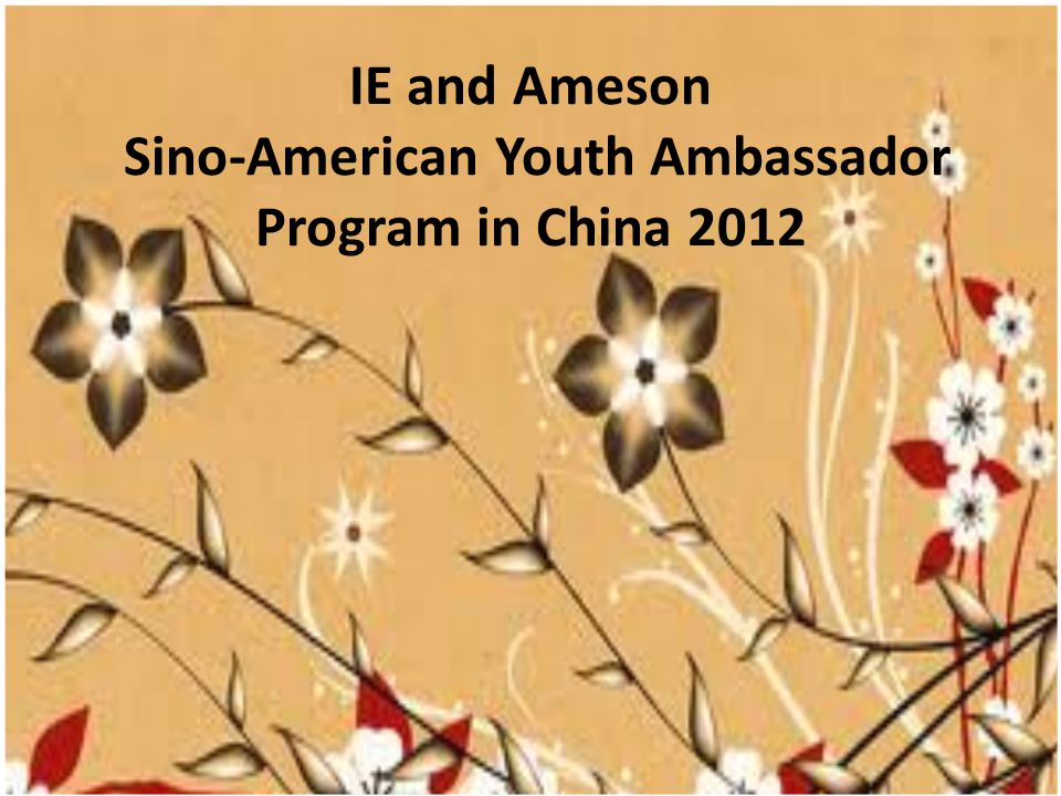 IE and Ameson Sino-American Youth Ambassador Program in China 2012