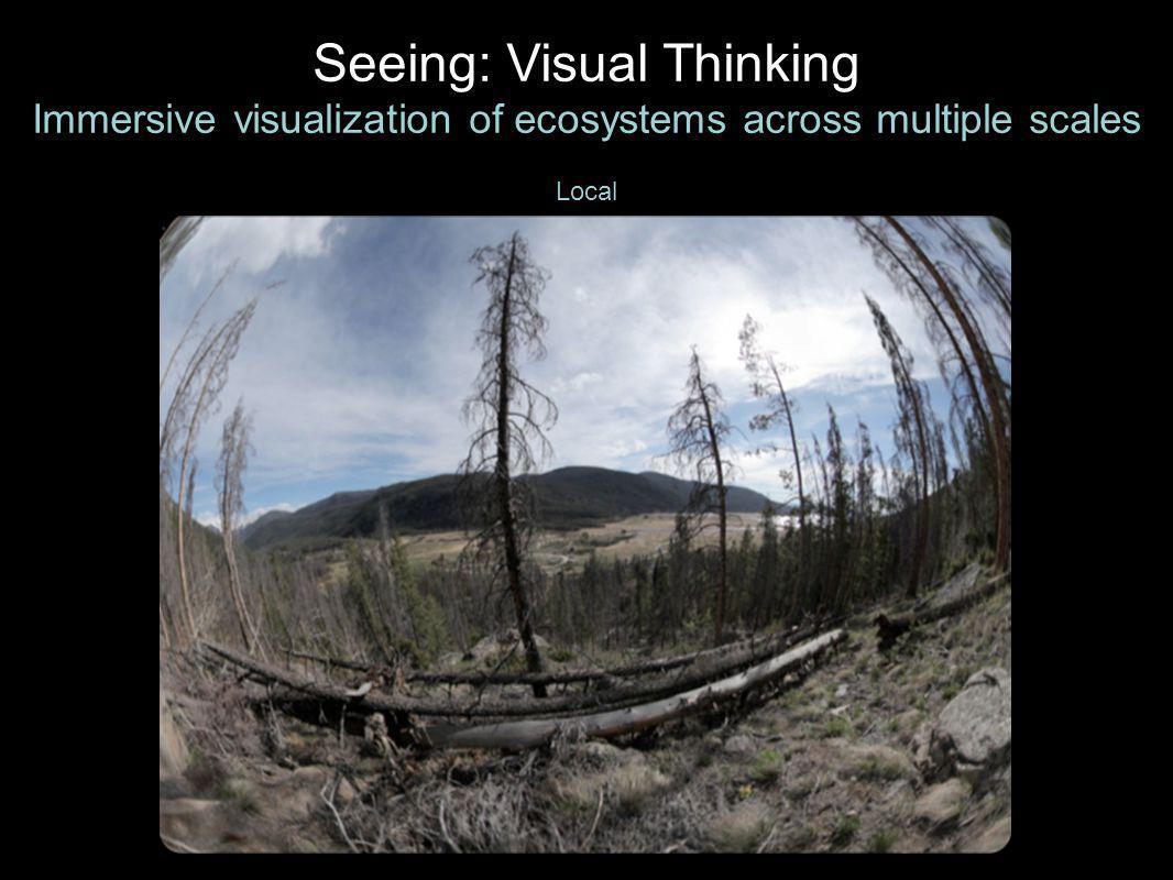 Local Seeing: Visual Thinking Immersive visualization of ecosystems across multiple scales