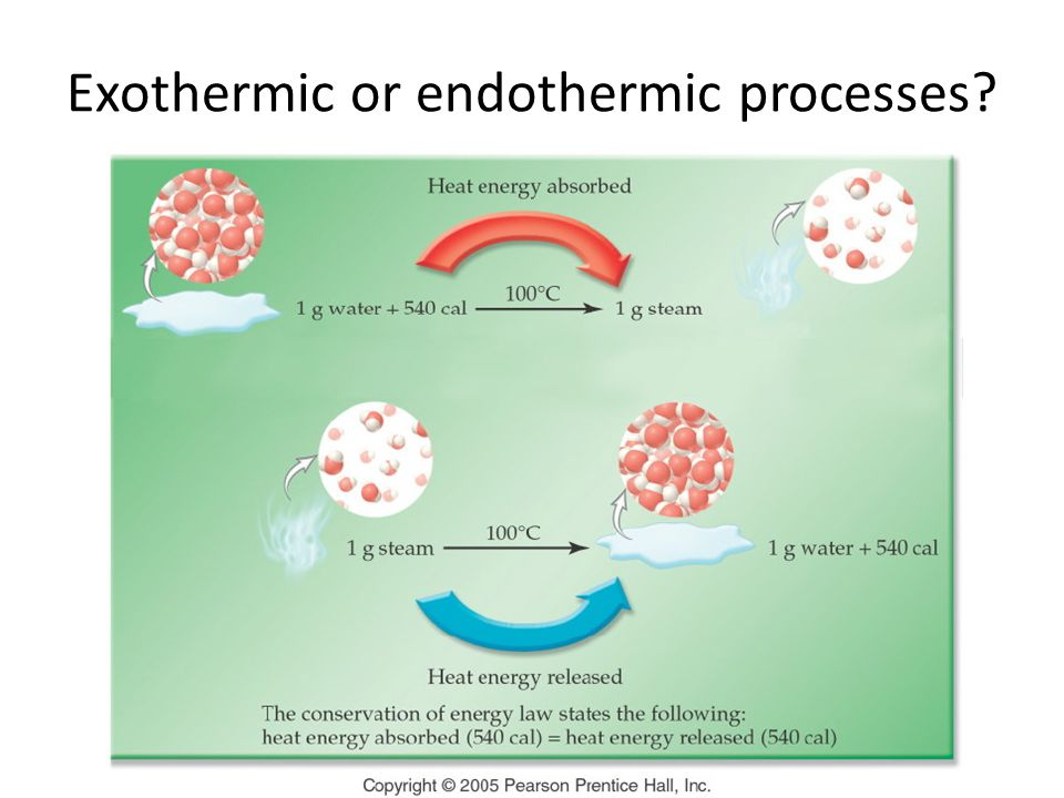 Exothermic or endothermic processes