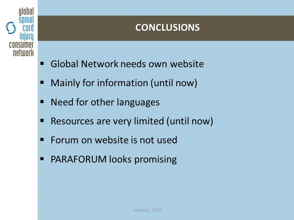  Global Network needs own website  Mainly for information (until now)  Need for other languages  Resources are very limited (until now)  Forum on website is not used  PARAFORUM looks promising CONCLUSIONS Istanbul, 2013