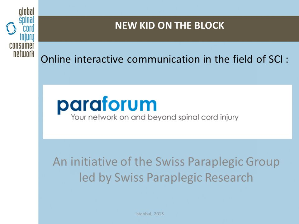 Online interactive communication in the field of SCI : NEW KID ON THE BLOCK Istanbul, 2013 An initiative of the Swiss Paraplegic Group led by Swiss Paraplegic Research