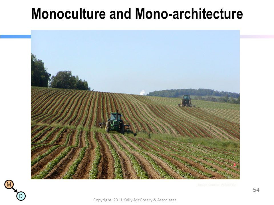 M D Monoculture and Mono-architecture 54 Copyright 2011 Kelly-McCreary & Associates Image Source: Wikipedia